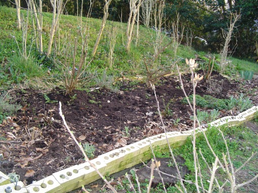 March raised bed
