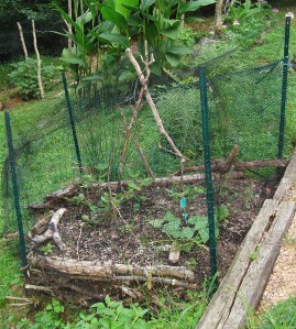 My friend has been experimenting with Hugelkulture, building raised beds on a foundation of branches found in her ravine.  This gives more growing space in her steeply banked yard.
