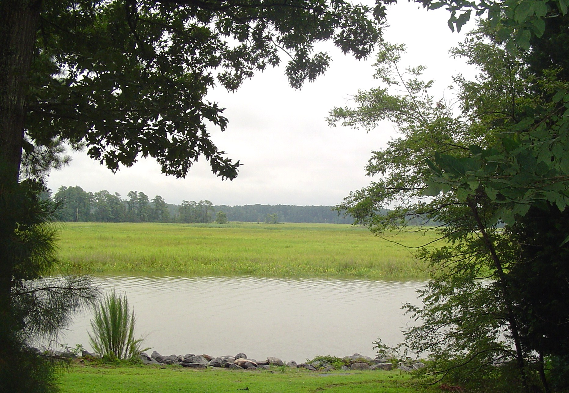 View towards Jamestown Island from the Colonial Parkway.