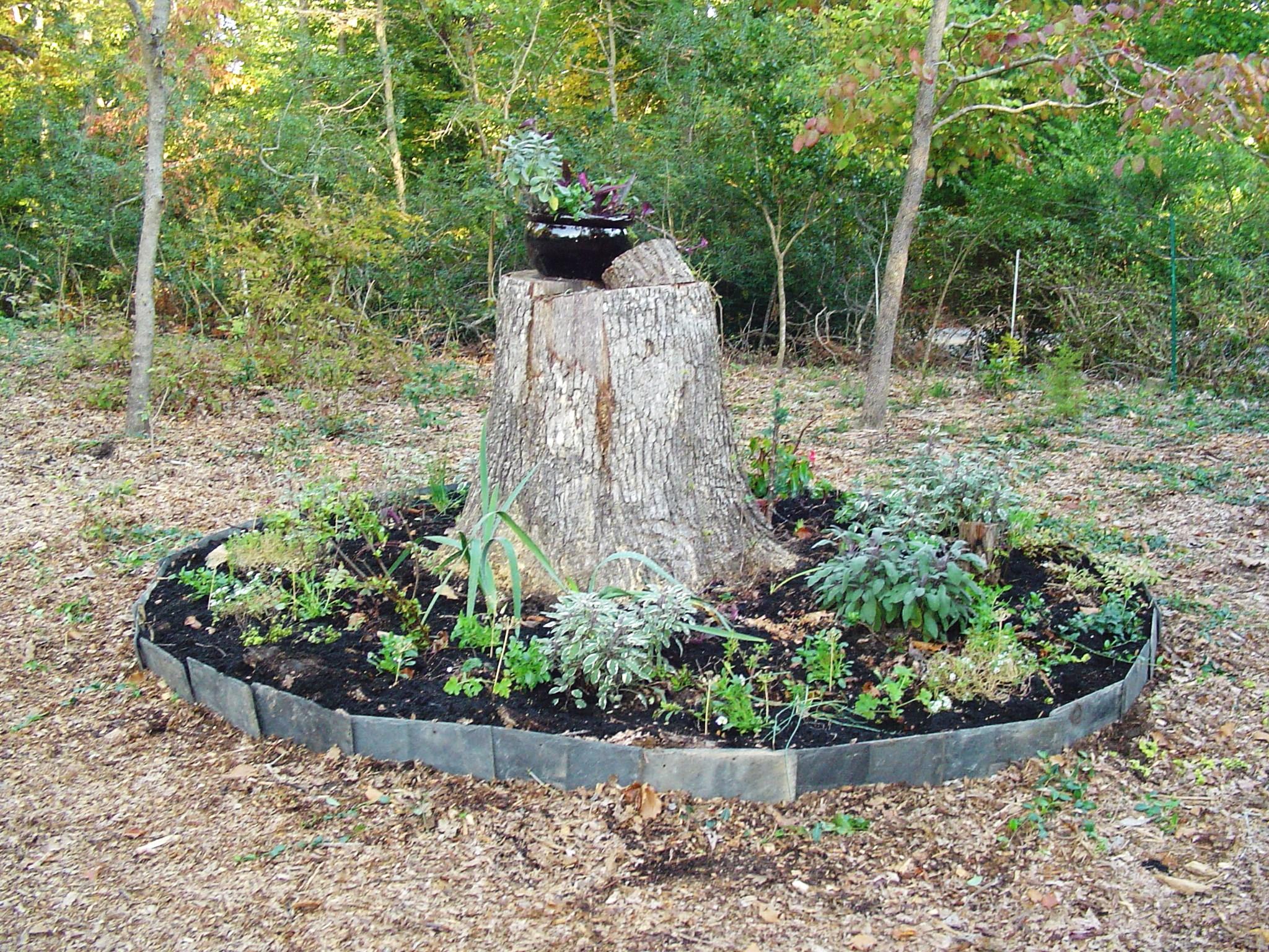 Sage Forest Garden