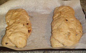 These loaves have risen for 40 minutes, and have been brushed with an egg wash.  They are ready to bake.