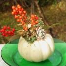 November 17 pumpkins 009