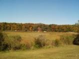 A marsh between Williamsburg and Jamestown