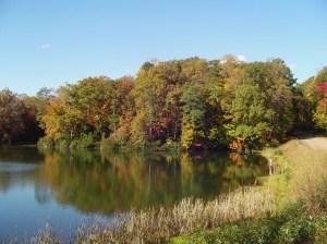 November 3 2013 Parkway 023