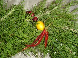 Cranberries, Kumquats, and dried chillies strung on floral wire garland this wreath.