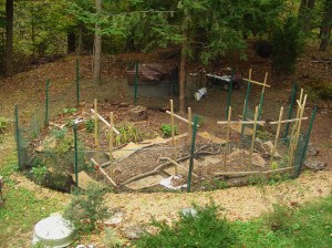 My friends' garden, newly re-designed and fences rebuilt.