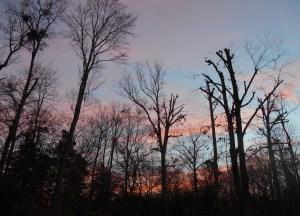 December 20 sunrise 006