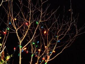 december 22 2013 lights 002