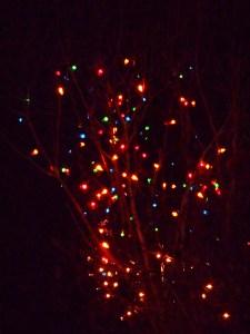 december 22 2013 lights 006