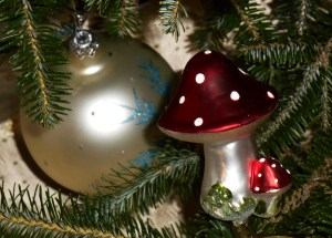 Glass Amanita muscaria mushrooms are popular ornaments in parts of Europe, where their original connection to Winter Solstice celebrations is remembered.