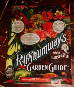 Specialty seeds must nearly always come from catalogs.