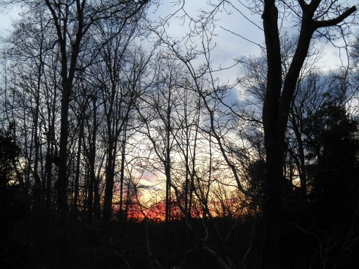 january 23 sunset 007