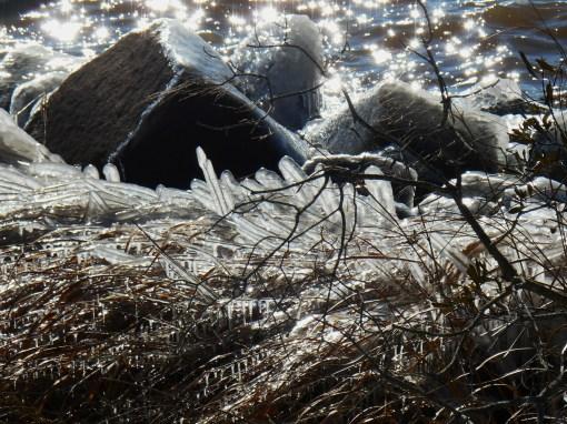 January 24 ice 048