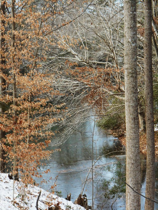 January 26 2014 ice 023