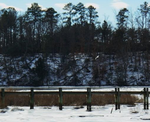 January 26 2014 ice 051