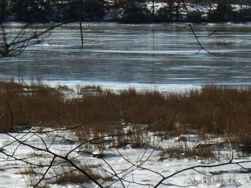 January 26 2014 ice 096