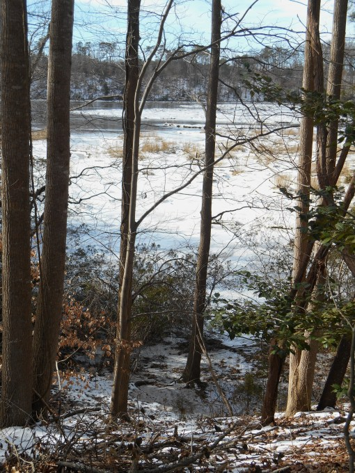 January 26 2014 ice 099