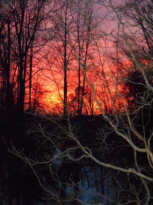 January 29 2014 sunset 009