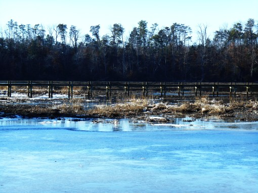 January 4 ice 041