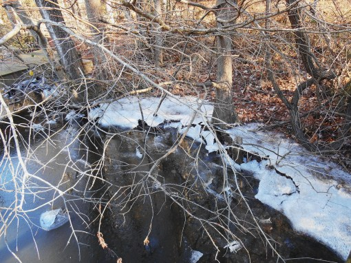 January 4 ice 079