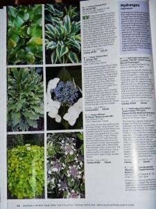 January 6, 2013 catalog 007