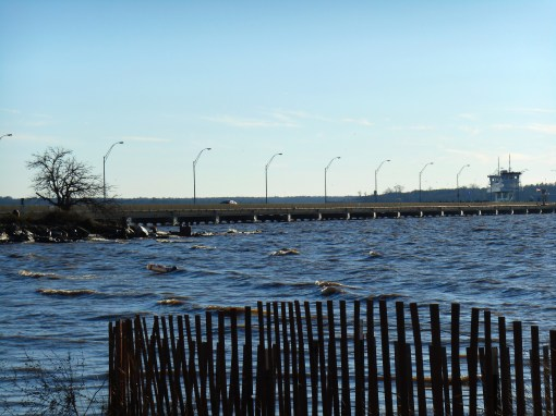 The James River at Jamestown Beach, near the ferry dock.