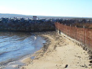Jamestown Beach on Tuesday afternoon.  At 21 degrees, with a wind, wild ice gathers at the high tide line.
