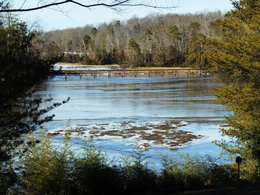 College Creek at noon today, flowing freely in the deeper channel, but frozen in the marshy shallows near the shore.