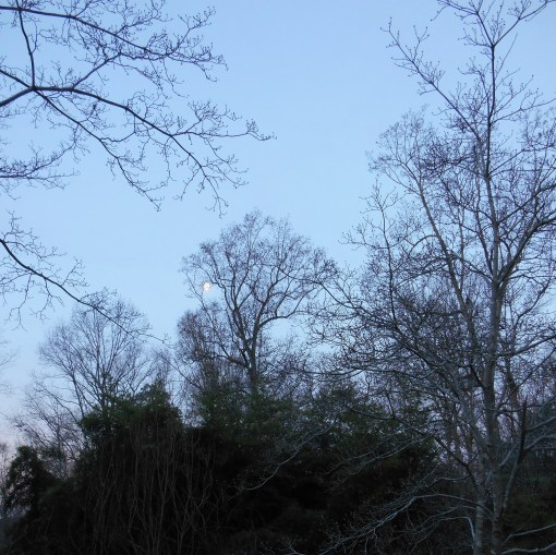 December 20 sunrise 016