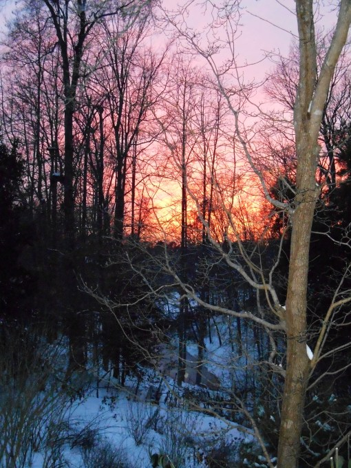 January 29 2014 sunset 007