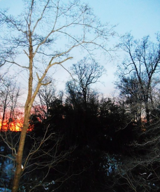 January 29 2014 sunset 014