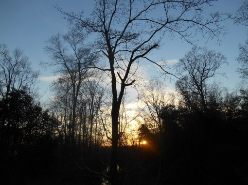 March 1 sunset 005