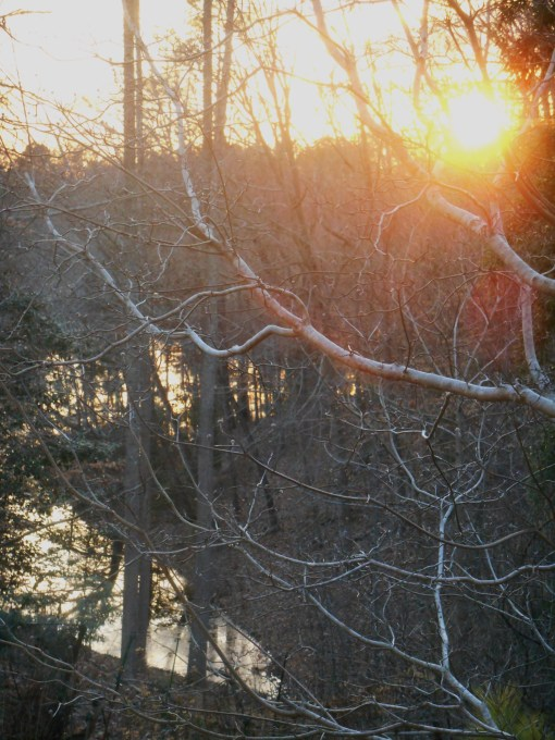 March 1 sunset 015
