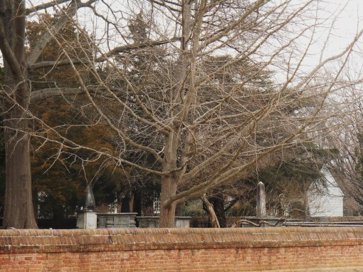 Bruton Parish church yard, as seen from Duke of Gloucester Street.