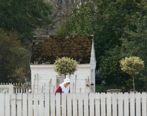 A costumed gardener working at the Colonial Williamsburg garden on Duke of Gloucester St.  This demonstration garden is open to the public without a ticket, and sells a variety of plants and garden themed items throughout the year.