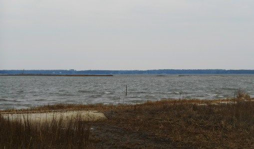 The whitecaps on the York river reflect what a windy morning we've had ahead of the next weather front.