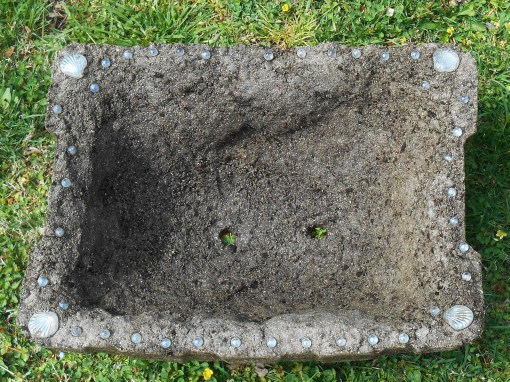 two large drainage holes are important so the plants' roots don't get too wet when it rains.