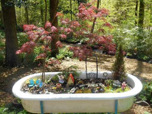 An intricate fairy garden in a large basin overlooks this forest garden