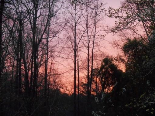 April 7 sunset 009