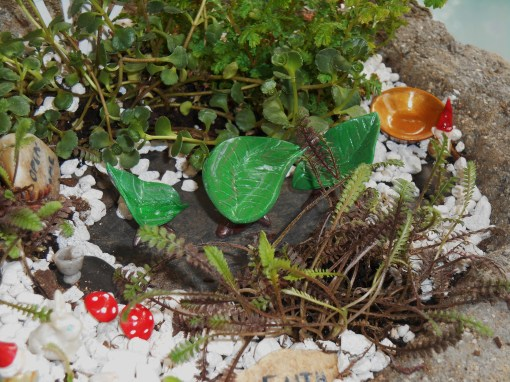 A gardening friend and I built this, and several other fairy gardens, two summers ago.
