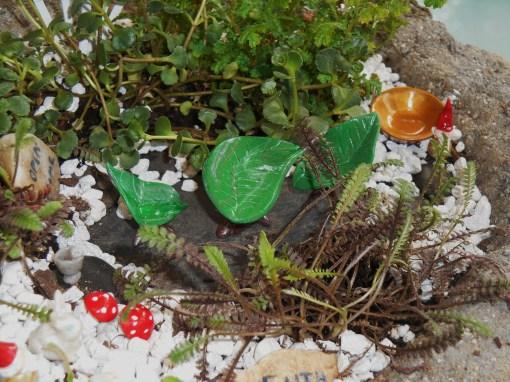 May 18, 2014 fairy gardens 009