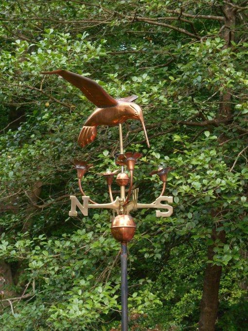A hummingbird keeps watch from the deck of our friends' garden.