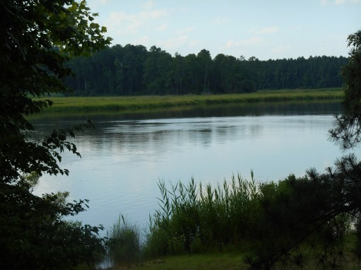 A marsh along the Colonial Parkway, Jam,es City Co. Virginia