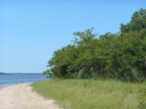 Beaches just like this one line miles and miles of Virginia's rivers as they near the Chesapeake Bay.