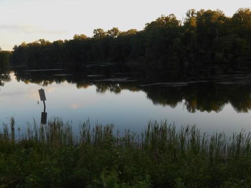 July 28, 2014 pond 021