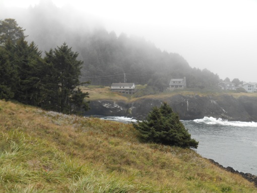A foggy mid-day along the coast on Highway 101.