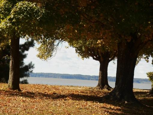October 19, 2014 fall color 050