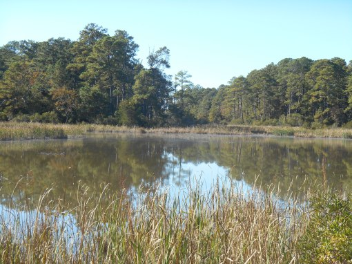 Passmore Creek