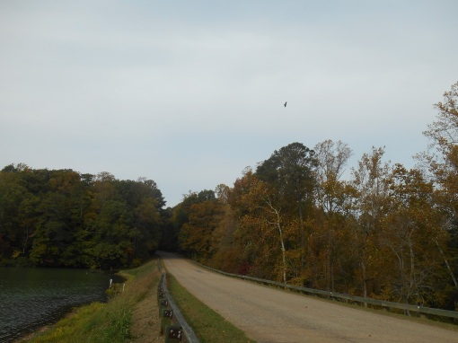 The Colonial Parkway skirts or crosses many waterways on its journey from Jamestown on the James to Yorktown on the York RIver.
