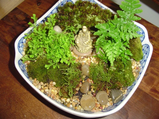 Another moss garden made for a table centerpiece in February 2012.